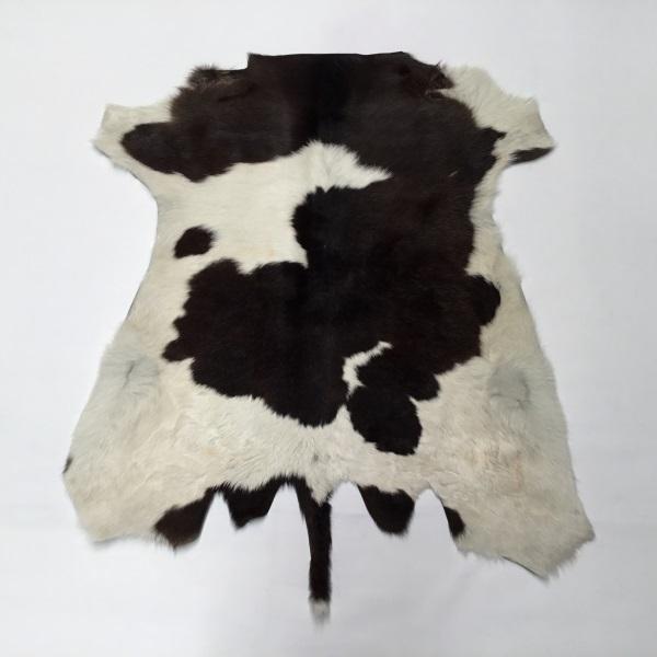 Calf Skin Large #6