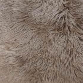 Australian Sheepskin - Camel