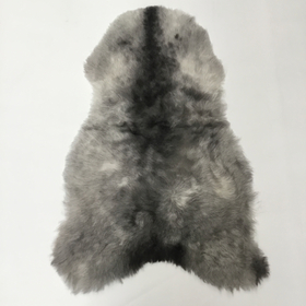 Shorn Icelandic Sheepskin Rugs - Short Wool Natural Grey, Dark Edge, Natural White
